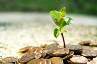 Как защитить свои инвестиции